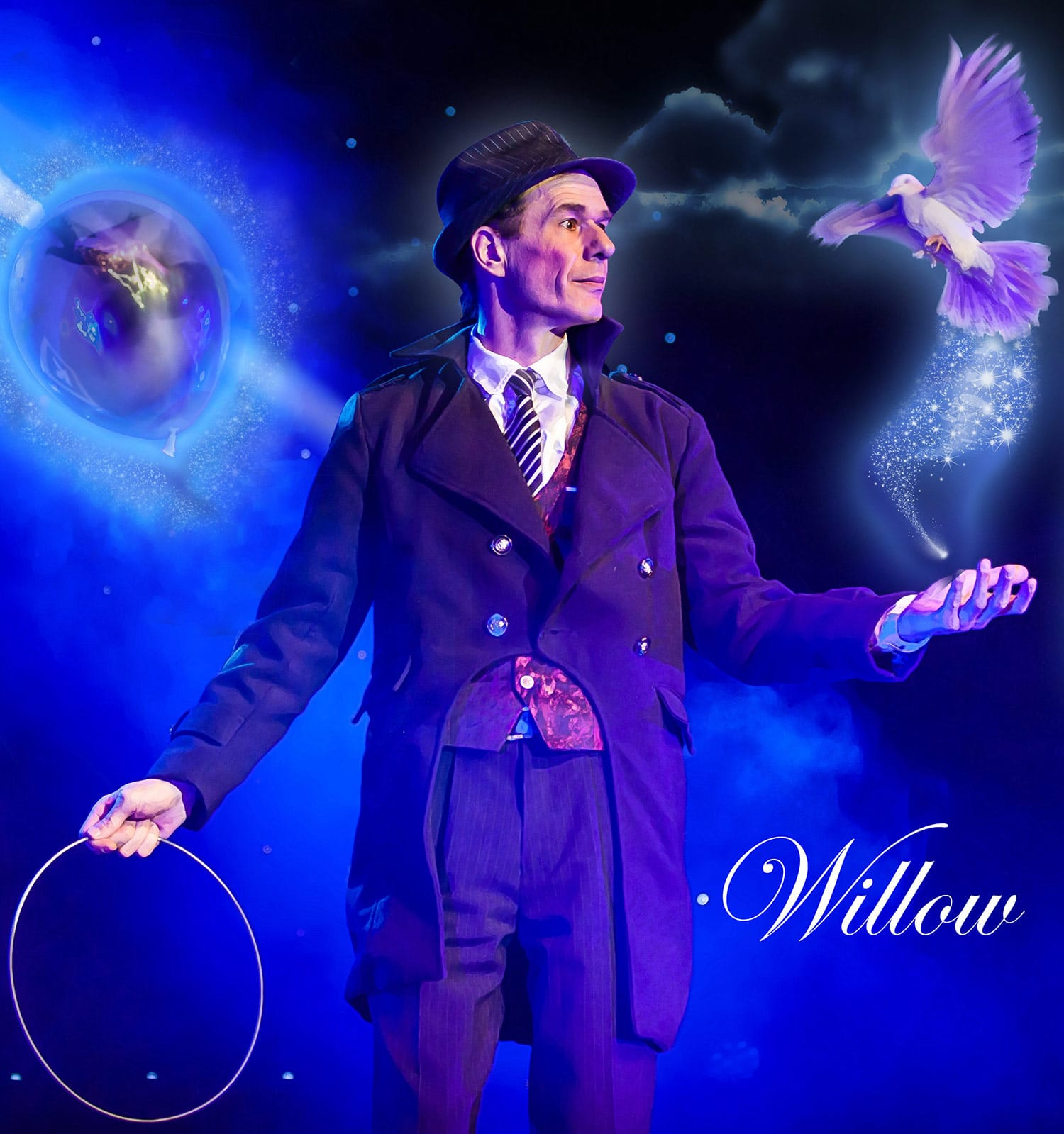 willow-magicien-b-bird